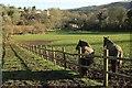 ST7761 : Grazing land, Midford Brook valley by Derek Harper