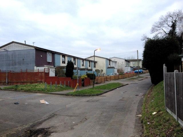 Francis Lane, Park Wood