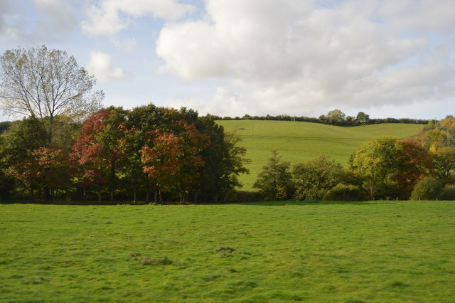 Autumnal colours, The Culm valley