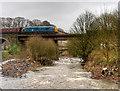 SD7915 : East Lancashire Railway, Brooksbottoms Viaduct by David Dixon