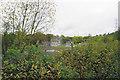 SK0481 : Chapel-en-le-Frith Wastewater Treatment Works by Bill Boaden