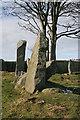 NJ8513 : Tyrebagger Recumbent Stone Circle (11) by Anne Burgess