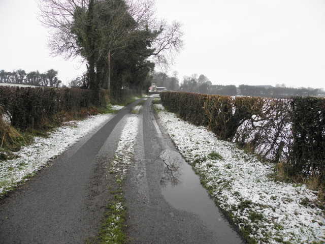 Wintry at Mountjoy Forest East Division