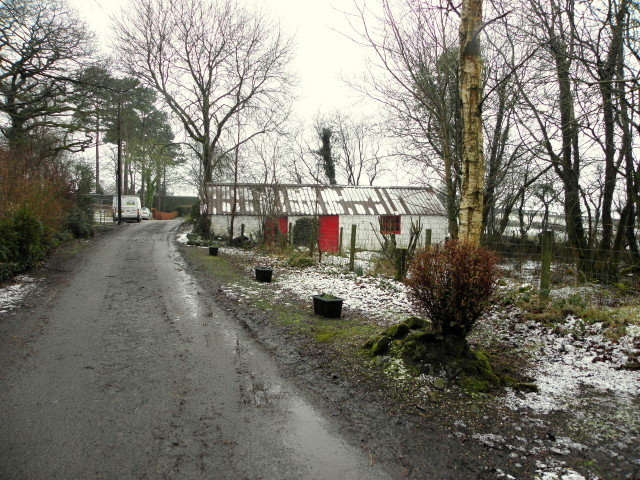 Wintry along Rash Road