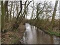 TA0045 : Bealey's Beck looking upstream by Jonathan Thacker