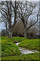 ST2835 : Bridgwater : Hamp Brook by Lewis Clarke