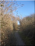 SS8280 : Ascending public footpath by South Cornelly by eswales