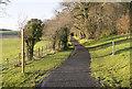 H3906 : Track near Cavan by Rossographer