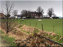 SD7807 : Coney Green Farm by David Dixon