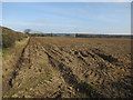 TG1539 : Field by Red Barn Lane by Hugh Venables