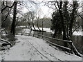 H4772 : Wintry along the Camowen River by Kenneth  Allen