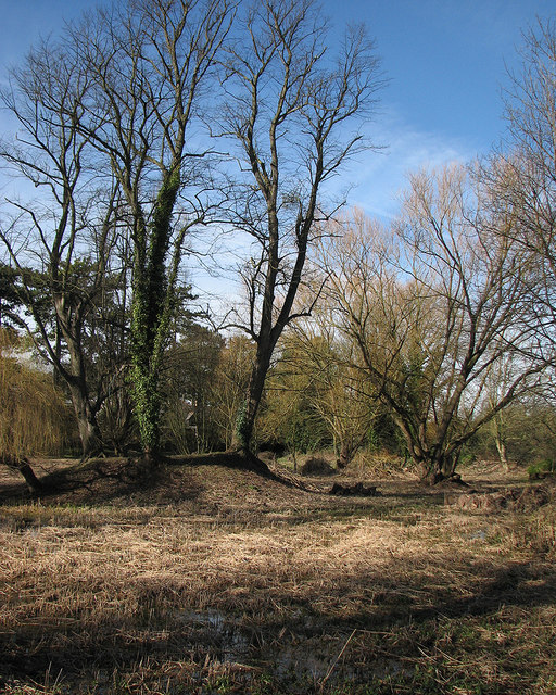 Fulbourn Horse Pond