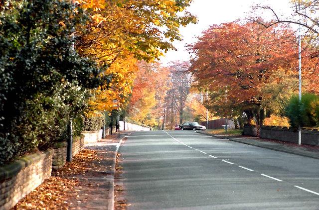 Autumn on Hale Road