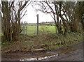 ST5658 : Path to Lower Gurney Farm by Neil Owen