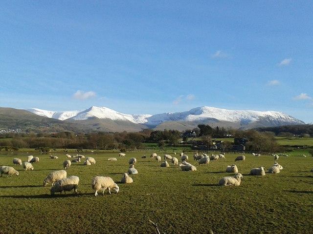 Carneddau Mountains, Snowdonia