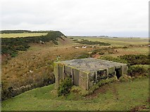 NU2521 : Pillbox south of Dunstanburgh Castle by Andrew Curtis