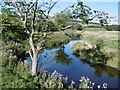 NT9030 : River Glen by Richard Webb