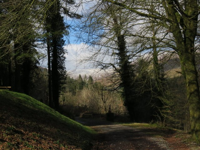 Start of a footpath in Galty Castle Wood
