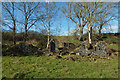 NS2808 : Abbey Mill Ruins by Mary and Angus Hogg