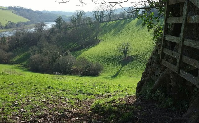 Combe above the Dart
