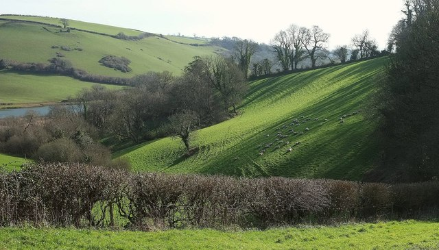 Dart valley slopes from Sharpham Drive