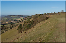 TQ2452 : Colley Hill by Ian Capper