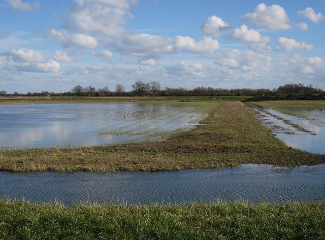 Shallow flooding on the Ouse Washes