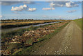TL4583 : Track by the Ouse Washes by Hugh Venables