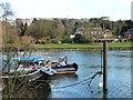TQ1773 : Grey heron on top of a mooring post, Richmond by Christine Johnstone