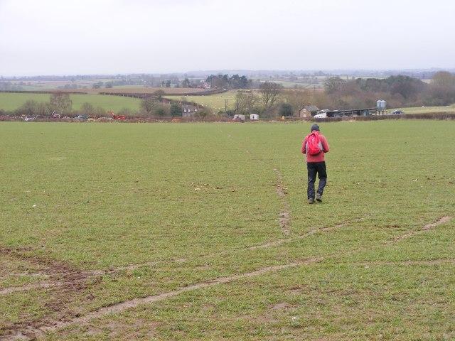 Field Footpath