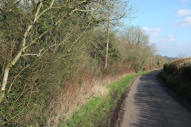 Priston Lane