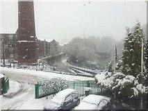 SJ9398 : Snow by the Ashton Canal by Bill Boaden