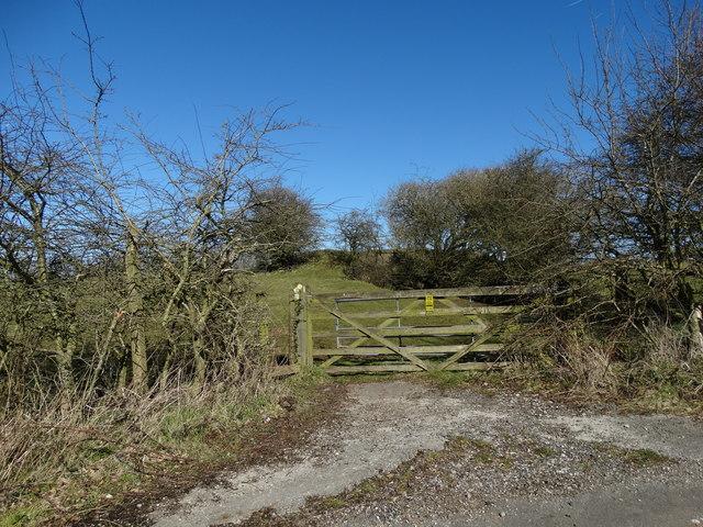 On Standlow Lane, Kniveton