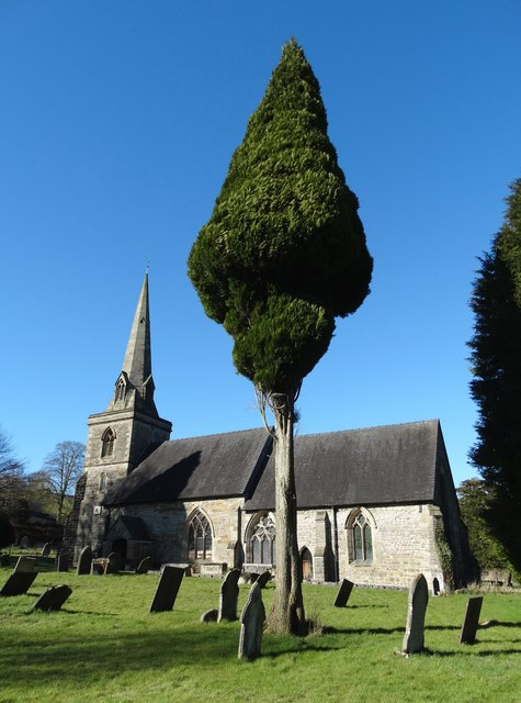 St Edmund's Church, Fenny Bentley and a tree