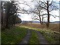 ST5759 : Around Wick Green Copse by Neil Owen