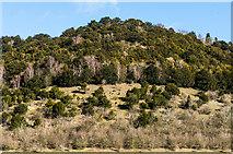 TQ2352 : Mount Hill by Ian Capper