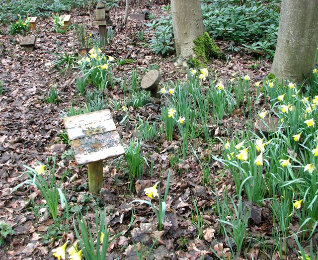 Graves at GreenAcres woodland burial ground