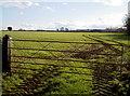 ST5956 : Weaving path by Neil Owen