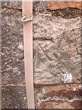 SS8983 : Ordnance Survey Cut Mark by Adrian Dust