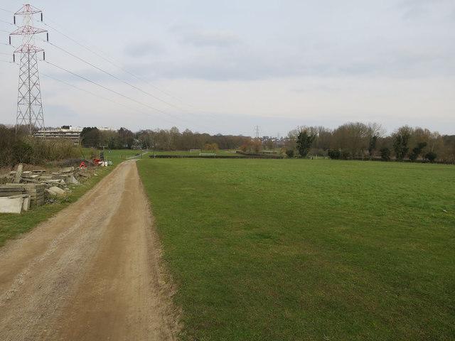 Grassland by UEA