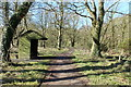 NX4845 : Woodland Path at Rigg Bay by Billy McCrorie