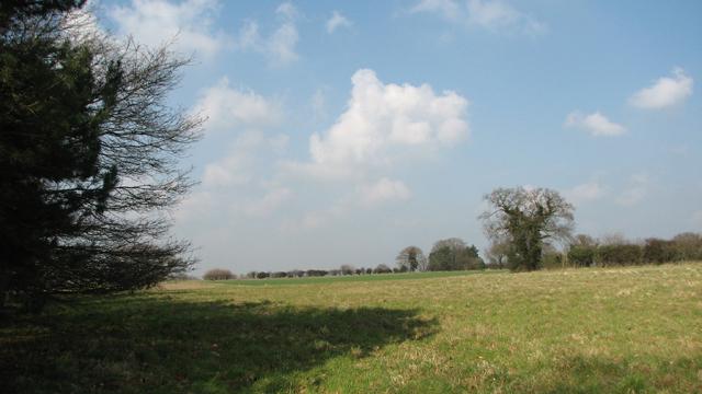 Fields near Bawburgh