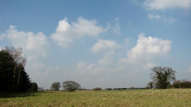 Farmland by Bawburgh