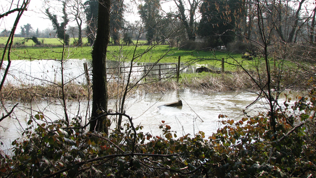 The River Yare in spate