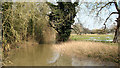 TG1208 : Tributary of the River Yare at Marlingford by Evelyn Simak