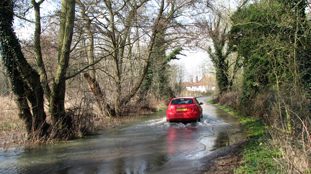 Braving the flood