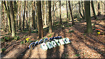 TG1607 : Woodland graves at GreenAcres by Evelyn Simak