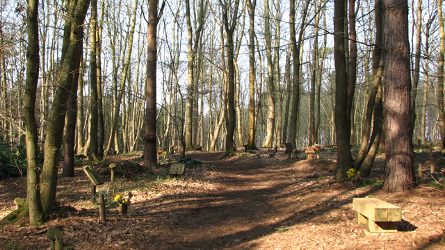 Path traversing GreenAcres burial ground