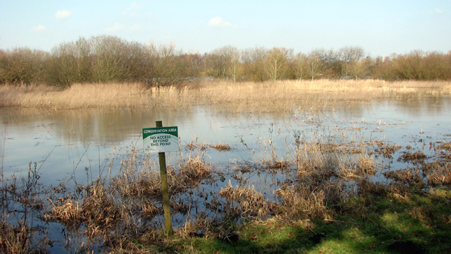 Conservation area north of Colney Wood