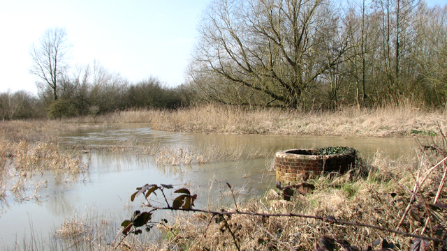 The River Yare north of Colney Hall